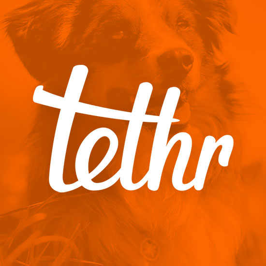 Tethr: GPS Pet Tracker